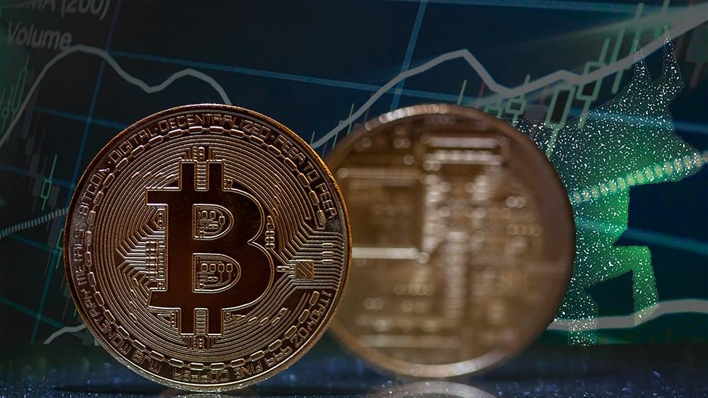 Moneda de Bitcoin con gráfico alcista y toro de fondo. Composición por CriptoNoticias. twenty20photos / elements.envato.com; @starline / Freepik.com; erika8213 / elements.envato.com