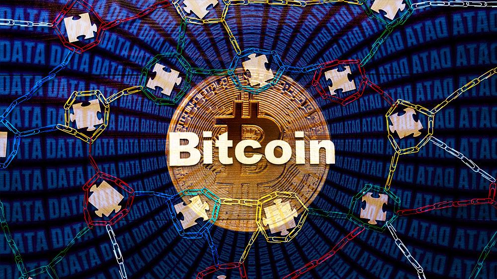 Blockchain de Bitcoin con moneda y base de datos en el fondo. Composición por CriptoNoticias. garloon / elements.envato.com; geralt  / pixabay.com; ESchweitzer / elements.envato.com.