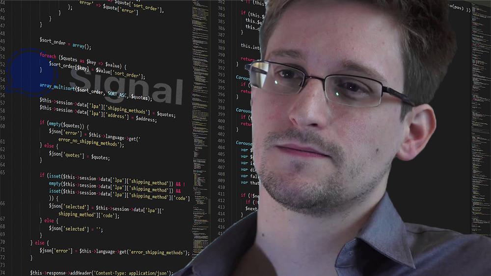 Edward Snowden frente a pantalla con código y logo de Signal superpuesto. Composición por CriptoNoticias. Edward Snowden / edwardsnowden.com; Signal Messenger / wikipedia.org; Boskampi  / pixabay.com