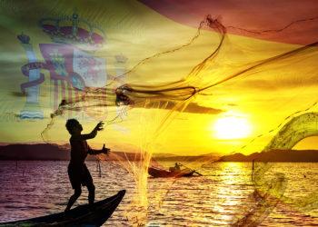cadena suministros pescado bloques