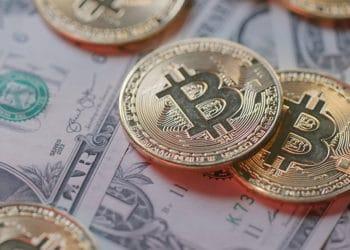 paridad dolar bitcoin mercado criptomonedas 10 años