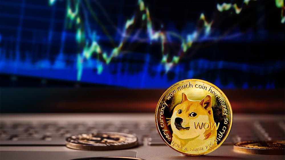 Moneda de Dogecoin sobre computadora con gráfico alcista en el fondo. Composición por CriptoNoticias. jirkaejc / elements.envato.com; grafvision / elements.envato.com; leungchopan / elements.envato.com.