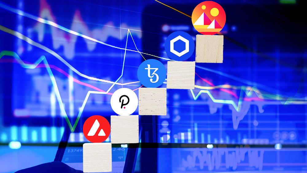 mercado valor ascende ecosistema