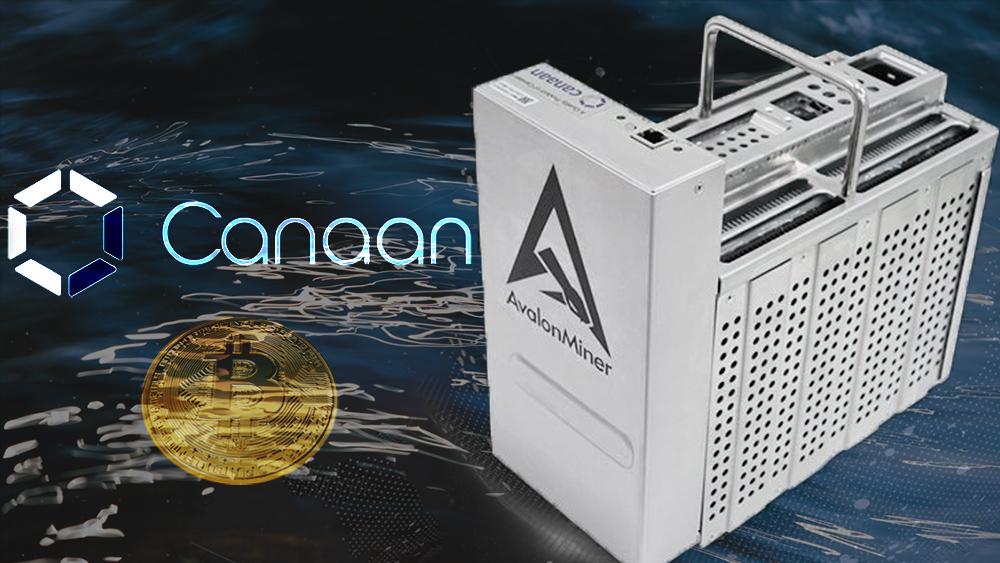 Minero de Bitcoin con enfriamiento por inmersión líquida de Avalon Miner. Composición por CriptoNoticias. Canaan / canaan.io; ESchweitzer / elements.envato.com; Canaan / canaan.io; Mint_Images / elements.envato.com.
