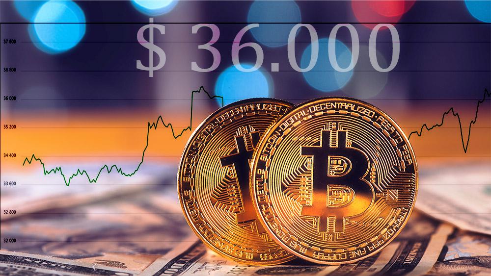 Monedas de Bitcoin con gráfico alcista en el fondo. Composición por CriptoNoticias. stevanovicigor / elements.envato.com; coinmarketcap / coinmarketcap.com.
