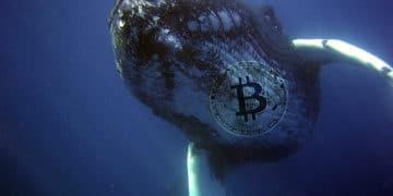 BTC valor criptomoneda mercados