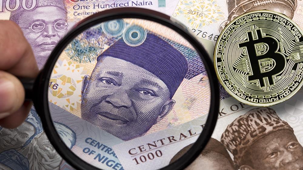 senador nigeria criptomoneda