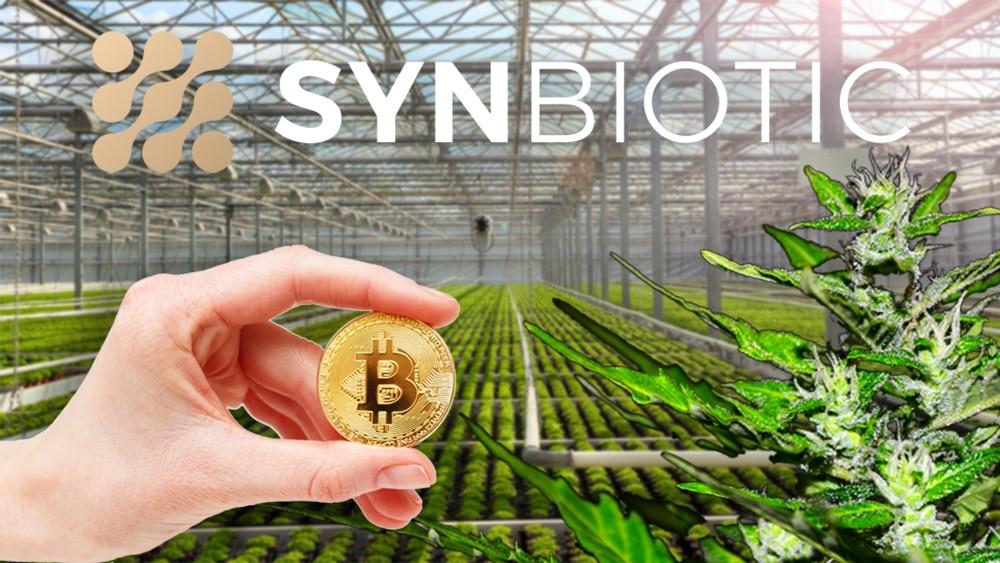 inversión bitcoin compañía marihuana alemania