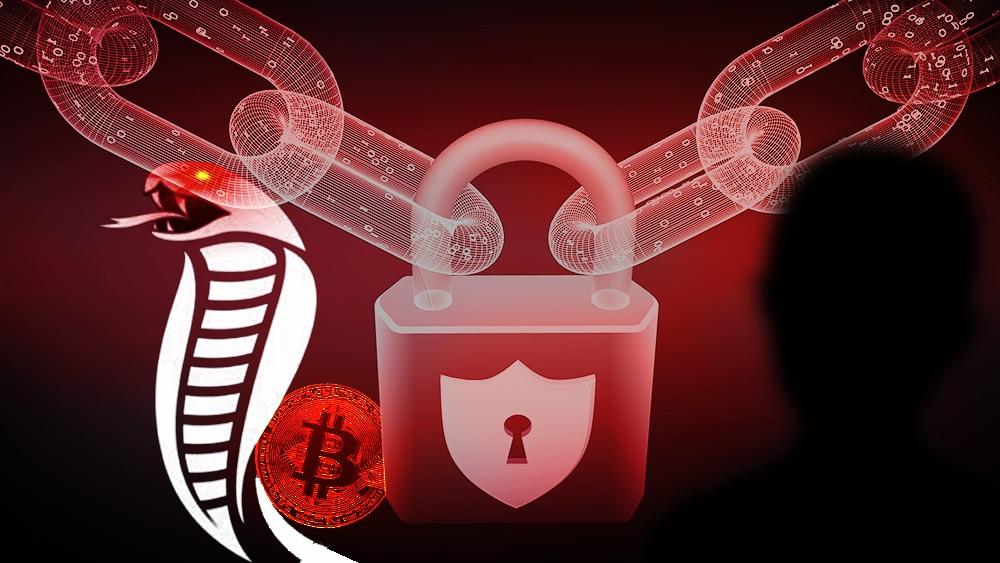 fondos usuarios bitcoin data