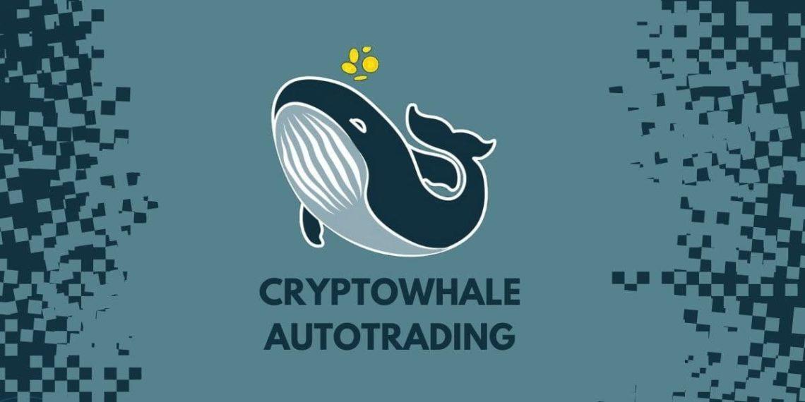 Canal de Telegram para autotrading de bitcoin
