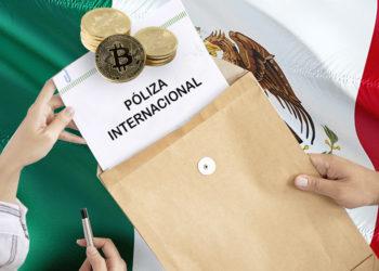 opción empresarios bitcoiners bitcoin