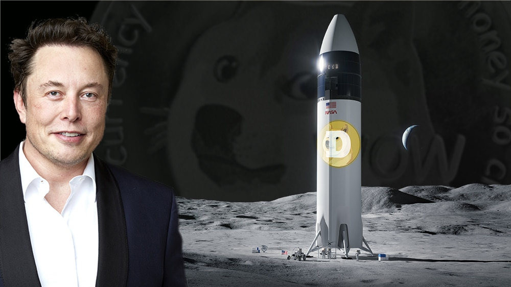 dogecoin luna cohete spacex elon musk