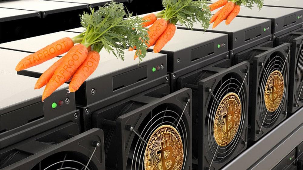 Mineros ASIC son zanahorias que representan Taproot y bitcoins.