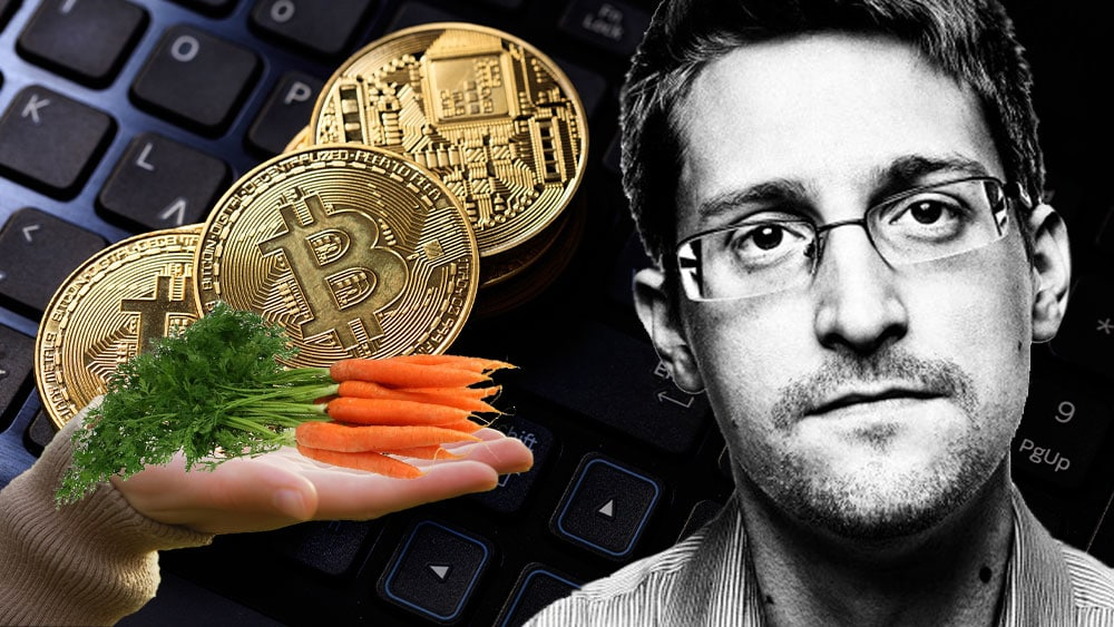 Bitcoins sobre teclado mano sosteniendo zanahorias que representan taproot y retrato de Snowden.
