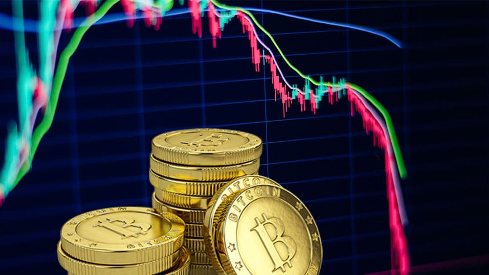 El precio de bitcoin en las últimas 24 horas tuvo un nuevo retroceso que rompió el soporte de USD 40.000. Composición por CriptoNoticias Fuentes:  avanti_photo   /  elements.envato.com  ;  pngegg  /  pngegg.com .