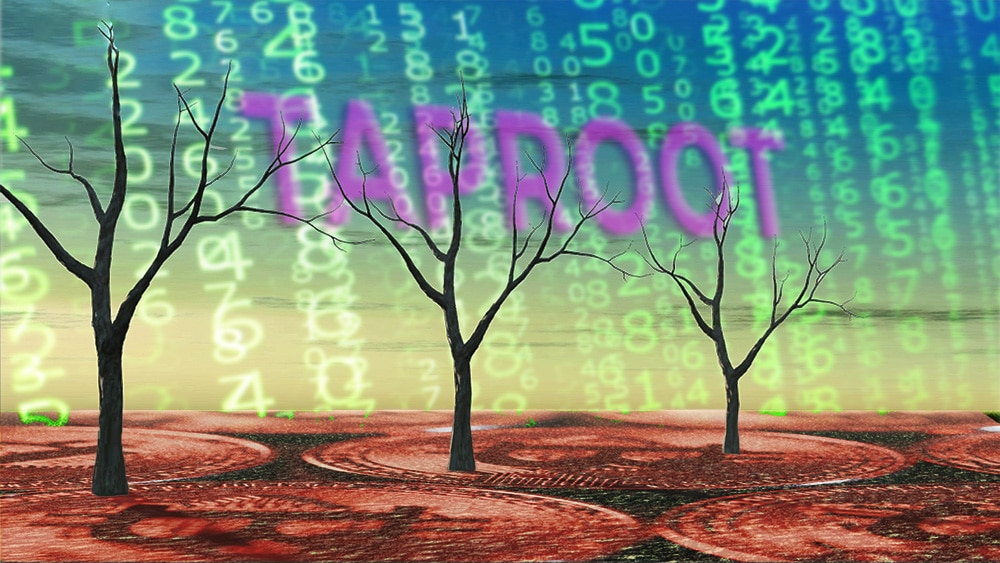activación speedy trial taproot bitcoin