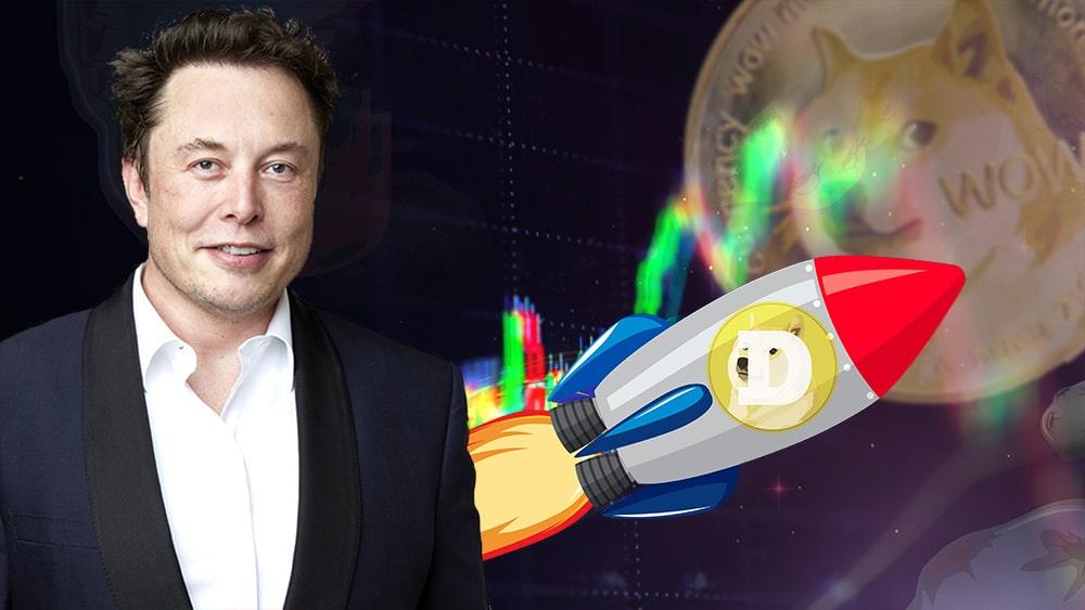 Elon Musk Tesla capitalización precio dogecoin