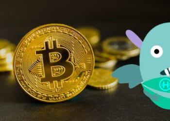 Bitcoin y logo de Hodl Hodl.