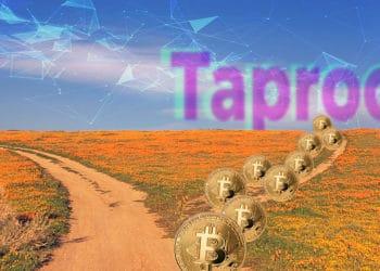 mineros bitcoin apoyan activación taproot blockchain bitcoin