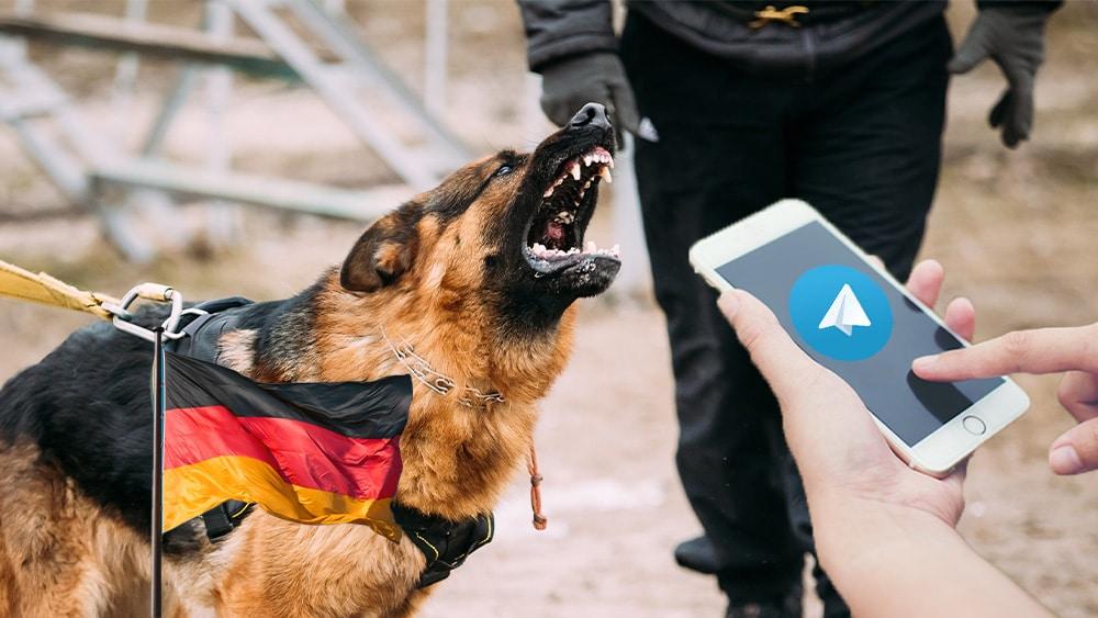 Perro alemán y Telegram.