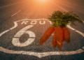 Autopista con número 6 y zanahorias representando Taproot.