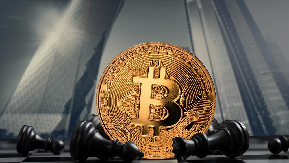 lyn Alden importancia bitcoin protocolo