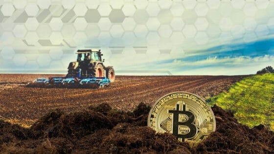 El Salvador: Banco Agrícola acepta bitcoin para pagar tarjetas de crédito