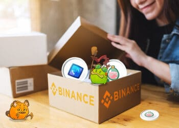 binance-smart-chain-slp-axie-infinity