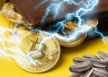BTC, semillas, wallet y lightning.