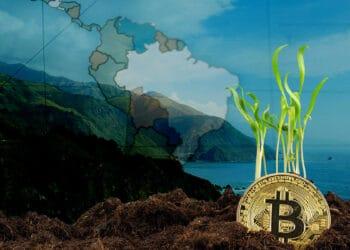 avance-adopción-bitcoin-latinoamérica
