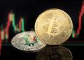 El precio de bitcoin se acercó a los USD 67.000 esta semana. Composición por CriptoNoticias. Fuentes:  formatoriginal  /  elements.envato.com .