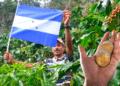 Agricultor Honduras y criptomonedas.