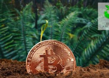 mineria-bitcoin-no-pone-peligr-medio-ambiente