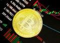 ventas-especulativas-bitcoin-willy-woo