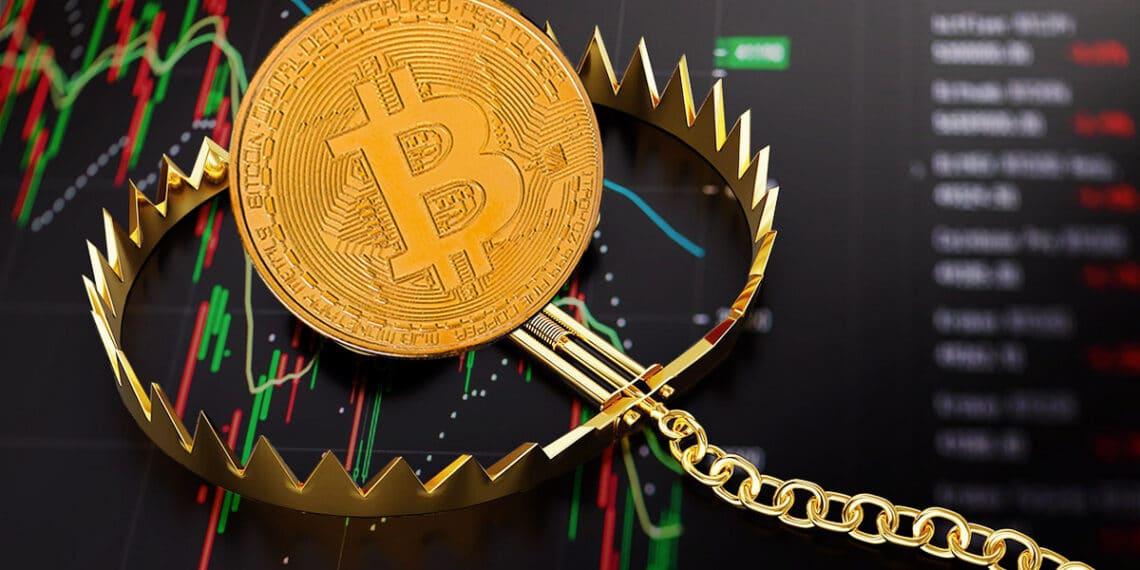 caida-precio-bitcoin-willy-woo