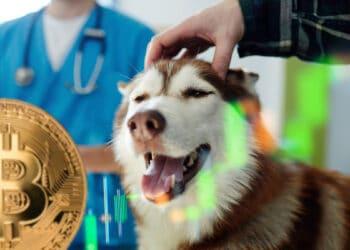 clinica-veterinaria-el-salvador-ganancias-bitcoin